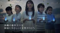 沖縄ガス株式会社 天然ガス